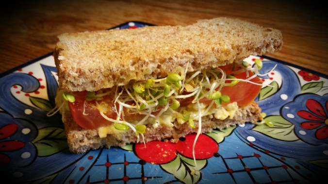Half of an Avocado-Sprout Sandwich